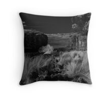 Near the Boat Ramp Throw Pillow