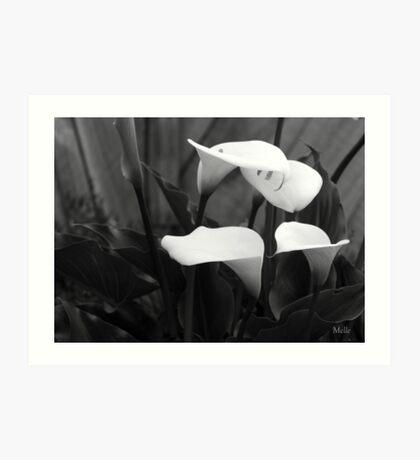 """Lillies"" Art Print"