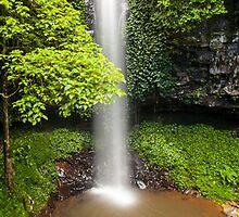 Crystal Shower Falls by Ron Finkel