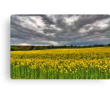 wavy fields Canvas Print