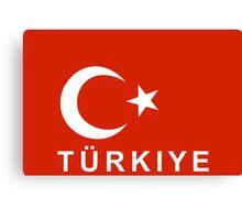 flag of Turkey Canvas Print