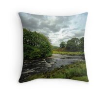 The River Dovey Throw Pillow