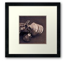 The Grenade Launcher  Framed Print
