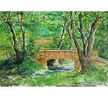 Danielle Fuchs' Bridge, Moulin De Perrot Photographic Print