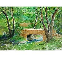 Danielle Fuchs' Bridge, Moulin De Perrot Photographic Print