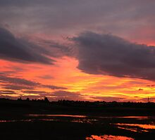 Grimethorpe Sunset by Trevor Fellows