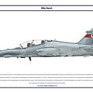 Hawk Australia 1 by Claveworks
