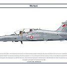 Hawk Bahrain 1 by Claveworks