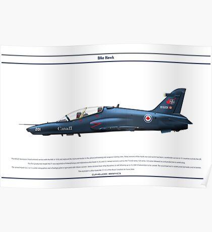 Hawk Canada 1 Poster