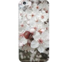 Spring Blossoms #1 iPhone Case/Skin