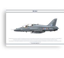 Hawk GB 3 Canvas Print
