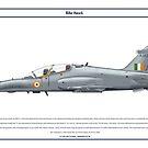 Hawk India 1 by Claveworks