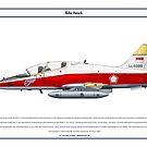 Hawk Indonesia 3 by Claveworks