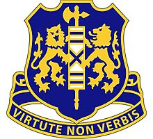 108th Infantry Regiment - VIRTUTE NON VERBIS - By Valor, Not by Words Photographic Print