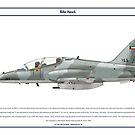 Hawk Kuwait 1 by Claveworks