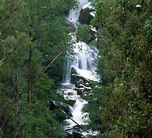 Keppel Falls, Victoria. by Ern Mainka