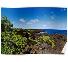On the road to Hana Poster