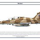 Hawk Oman 1 by Claveworks