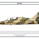 Hawk Saudi 1 by Claveworks