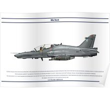 Hawk South Africa 1 Poster
