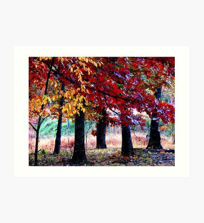 Simple Forest Scene Art Print