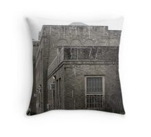 Refuge? Throw Pillow