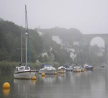 Calstock Viaduct by ChelseaBlue