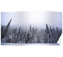 Rogers Pass Snow Storm #2 Poster