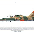 Hawk South Korea 1 by Claveworks