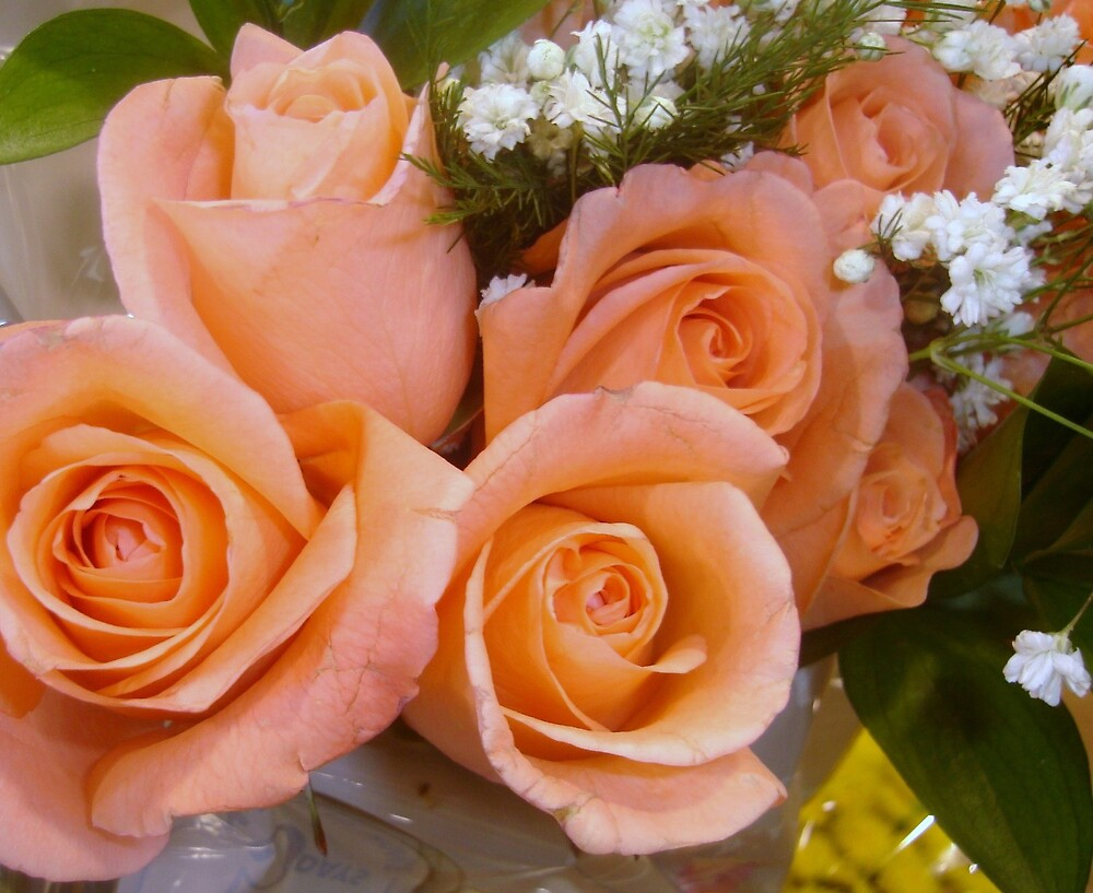 Peach Roses by Doreen