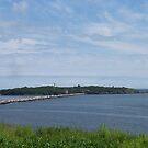 Partridge Island by Martha Medford