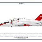 Hawk Switzerland 1 by Claveworks