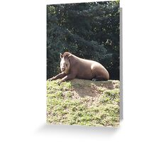 Tapir To The Top and Smile Greeting Card
