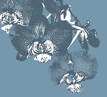 Homescape - wedgewood blue orchid  by Paul Davenport