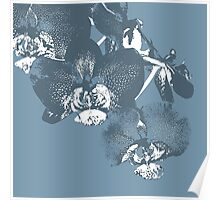 Homescape - wedgewood blue orchid  Poster