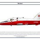 Hawk Switzerland 2 by Claveworks