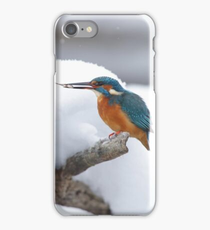 Kingfisher with a fish iPhone Case/Skin