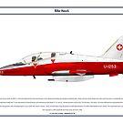 Hawk Switzerland 3 by Claveworks