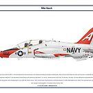 Hawk USA 1 by Claveworks