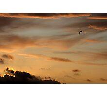Earth & Heaven Photographic Print