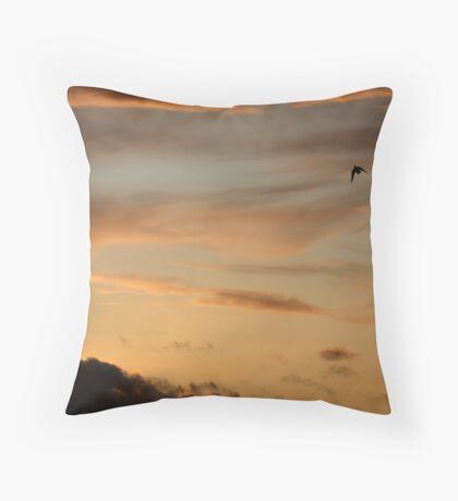 Earth & Heaven Throw Pillow