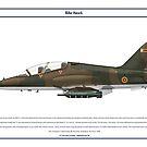 Hawk Zimbabwe 1 by Claveworks