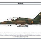 Hawk Zimbabwe 2 by Claveworks