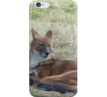 The Whistling Hunter At Rest iPhone Case/Skin