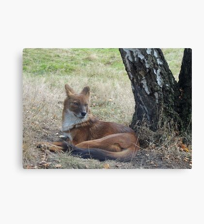 The Whistling Hunter At Rest Canvas Print