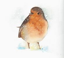Robin in the Snow by Ray Shuell