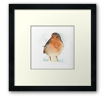 Robin in the Snow Framed Print