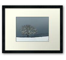 Lone snowy Wintertree Framed Print