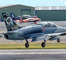 Aero L-39CM Atbatros 5301 by Colin Smedley