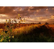 Colorado Farm Land III Photographic Print